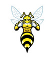 angry hornet mascot vector image