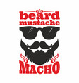 Beard mustache macho