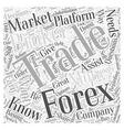 forex trading broker Word Cloud Concept vector image vector image