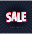sale banner template design special offer red vector image