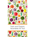 vertical border with colorful vegetables template vector image
