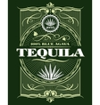 Vintage alcohol tequila drink bottle label vector image