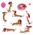 set with cute cartoon dachshund vector image