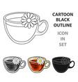 glass mug with tea usefulvegetarian therapeutic vector image vector image