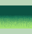 green grass on white background vector image