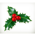 Holly traditional Christmas decoration icon vector image vector image