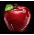 Red volume apple closeup natural image vector image