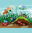 scene with many bugs in garden vector image