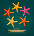 starfish isolated on dark green background vector image vector image