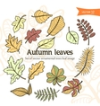 autumn3 vector image vector image