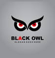 black owl logo eye logo owl icon flat vector image