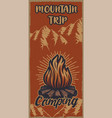 colour vintage poster on theme camping vector image