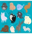 set cute cartoon winter north animal icon vector image vector image