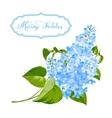Spring siringa flowers background vector image