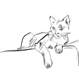 Black and white hand drawn cat cat vector image
