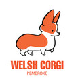 cute cartoon drawing of welsh corgi vector image vector image