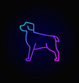 dog colorful linear icon vector image vector image