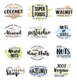 nuts and beans lettering vector image