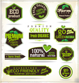 Set of organic labels vector image vector image