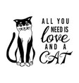 all you need is love and a cat meow power vector image vector image