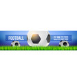 football balls on field sport arena in green vector image vector image