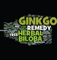Ginkgo biloba herbal remedy text background word vector image