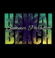 hawaii beach summer paradise abstract palm vector image vector image