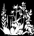 herbs silhouettes vector image vector image