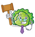 judge lettuce character mascot style vector image vector image