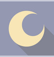 moon flat with shadows vector image