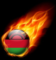 Round glossy icon of malawi vector image vector image