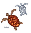 sea turtle isolated sketch icon vector image