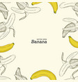 set of banana hand draw sketch vector image vector image