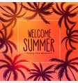 summer tropical sunset background with palm trees vector image vector image