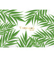 tropic palm leaves realistic background vector image