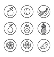 Fruit Flat design thin line icon set vector image vector image