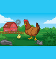 hen in farm with chick vector image vector image
