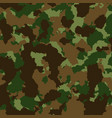 military or hunting camouflage background texture vector image vector image