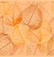 seamless floral pattern with autumn leaves vector image