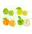 set colorful fresh fruit stains vector image