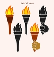 Set of burning torches vector image