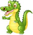 cartoon adorable crocodile posing vector image vector image
