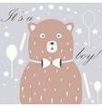 cute bear announces arrival of a baby boy vector image
