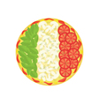 pizza as Italian flag vector image