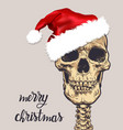 santa claus skull cartoon hand drawn vector image vector image