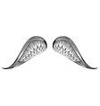 Sketch angel wings Hand drawn vector image