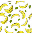 bananas and leaves pattern vector image