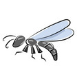 insect on white background vector image vector image