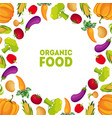 organic food farm fresh colorful vegetables with vector image vector image