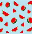 pattern watermelon vector image